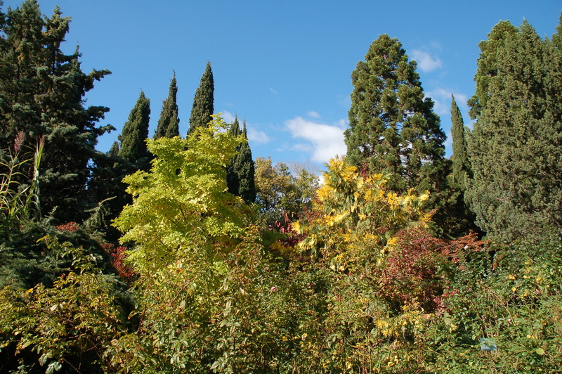 Фото природы осенью прекрасная пора